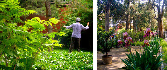 Chinese Woman and Garden