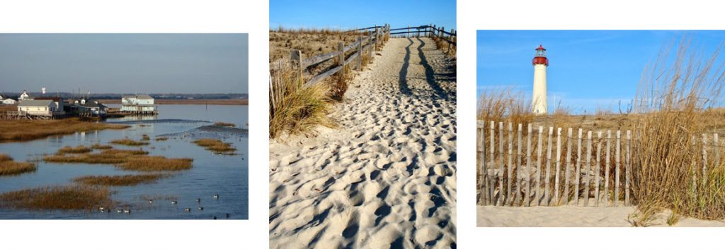 Rehoboth Beach Waterscapes